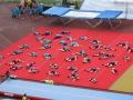 EuroGym2012_54.JPG